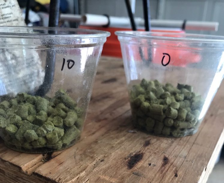 hop addition